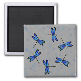 libélulas azules II Imán Cuadrado