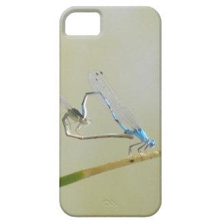 Libélulas/damselflies en amor funda para iPhone SE/5/5s
