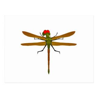 Libélulas de la libélula postales