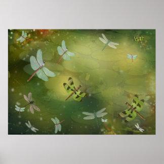 Libélulas e impresión del arte de Lillies del agua Póster