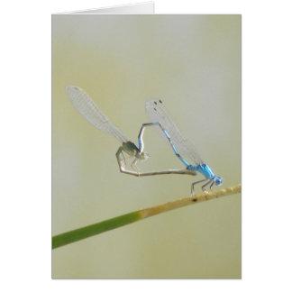 libélulas en amor tarjeta de felicitación