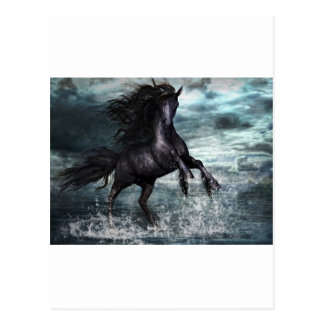 Liberale Horse Postcard
