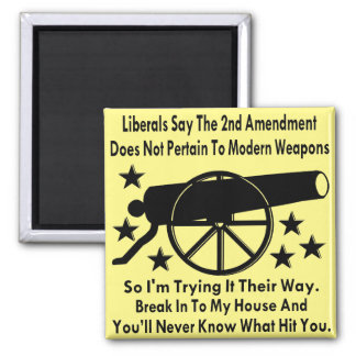 Liberals Say The 2nd Amendment Does Not Apply Magnet
