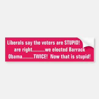 Liberals say we are stupid!!!!!!! bumper sticker