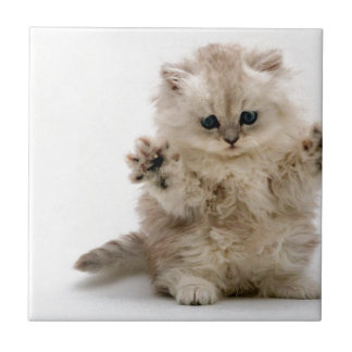 Libere el gatito de los abrazos azulejo cerámica