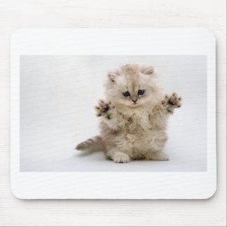 Libere el gatito de los abrazos mouse pad