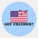 Libertad americana pegatinas redondas