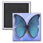 Libertad azul iman para frigorífico
