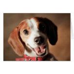 Libertad del beagle tarjeta