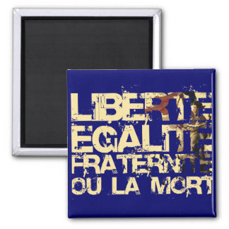 Liberte Egalite Fraternite: French Revolution Refrigerator Magnets