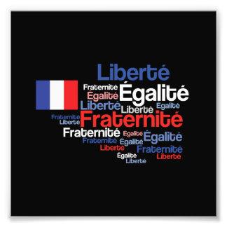 Liberté, Égalité, lema nacional francés de Cojinete