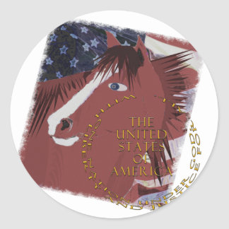 Liberty  and Justice For All Classic Round Sticker