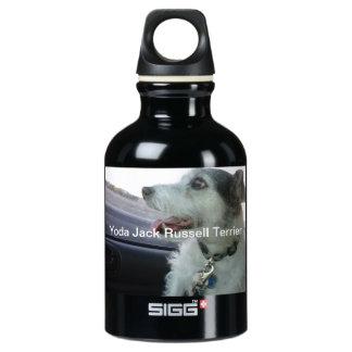Liberty Bottle SIGG Traveler 0.3L Water Bottle