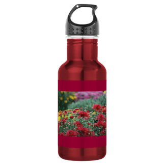 Liberty Bottleworks Aluminum 16 oz Water Bottle