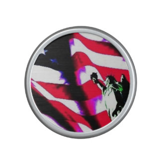 Liberty Flag painting on a Bumpster Speakers