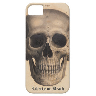 Liberty or Death Case iPhone 5 Covers