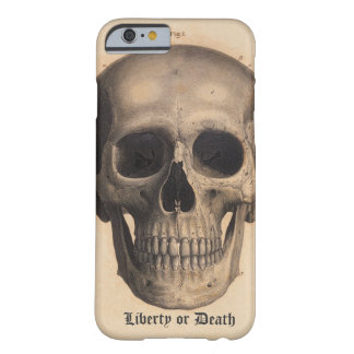 Liberty or Death Case iPhone 6 Case