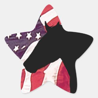 Liberty Star Sticker