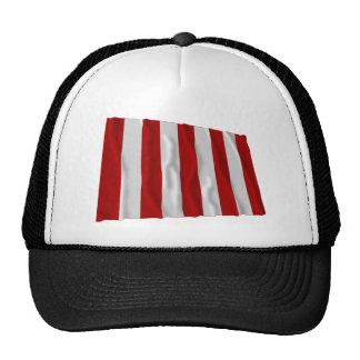 Liberty Tree Flag Trucker Hat