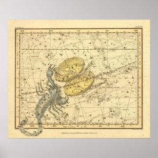 Libra, escorpión póster
