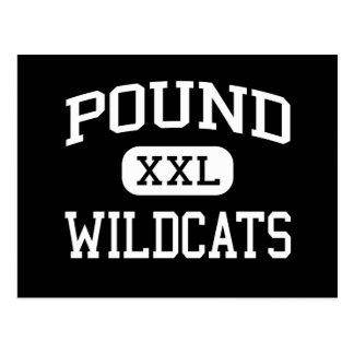 Libra - gatos monteses - High School secundaria - Postales