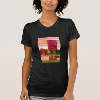 Library in Fall by Tam Nguyen Tee Shirt