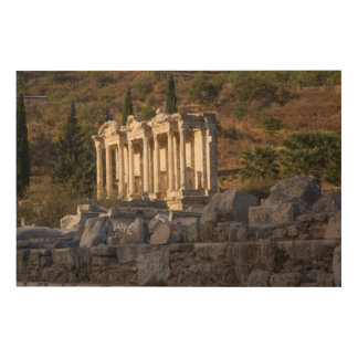 Library Of Celsus Ruins Wood Wall Art