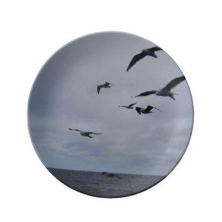 """""""Libre como placa decorativa de los pájaros de Platos De Cerámica"""