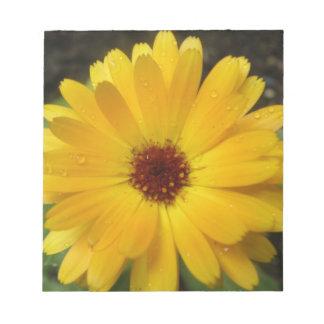 Libreta amarilla de la macro de la maravilla bloc de notas
