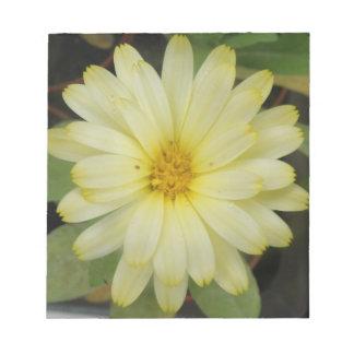 Libreta amarilla hermosa de la maravilla bloc de notas