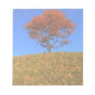 Libreta clara del día del otoño libretas para notas