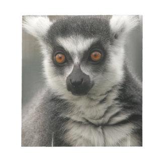 Libreta de la cara del Lemur Bloc De Papel