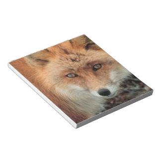 Libreta de la especie del Fox Blocs