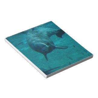 Libreta de la estrella del delfín libretas para notas