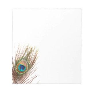 Libreta de la pluma del pavo real bloc de notas