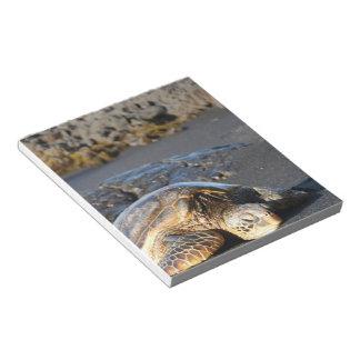 Libreta de la tortuga de mar bloc de papel