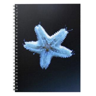 Libreta de las estrellas de mar