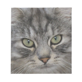 Libreta de plata de la cara del gato persa bloc de notas