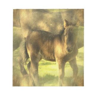 Libreta del collage del caballo del Appaloosa Libreta Para Notas