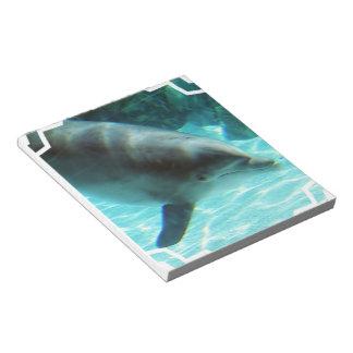 Libreta del delfín común bloc