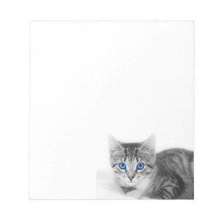 libreta del gato bloc de papel