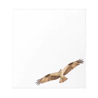 Libreta del halcón del vuelo bloc de notas