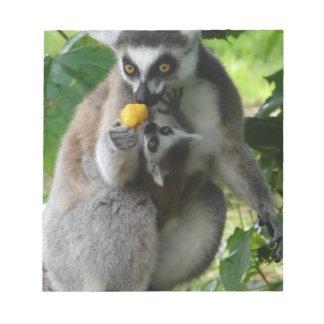 Libreta del Lemur Bloc