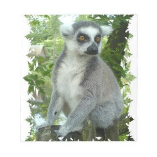 Libreta del Lemur de Madasgcar Libretas Para Notas
