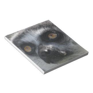 Libreta del Lemur del Ringtail Libretas Para Notas