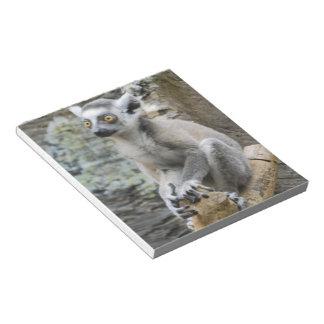 Libreta del Lemur Ringtailed del bebé Bloc De Notas