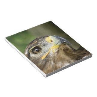 Libreta del ojo de Eagle Blocs