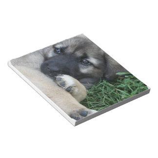 Libreta del perrito del pastor alemán blocs de papel