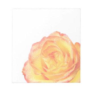Libreta del rosa anaranjado y amarillo bloc de notas