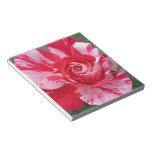 Libreta del rosa rojo y blanco blocs de notas